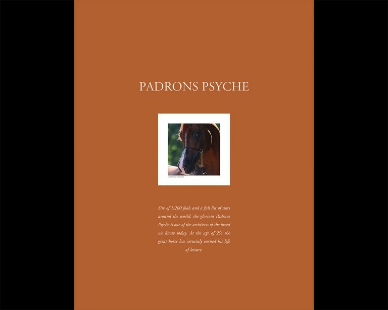 Padrons Psyche