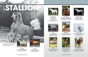 2017 Stallion Directory II
