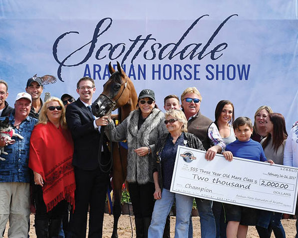 Scottsdale Signature Stallion and 2018 Scottsdale Contenders