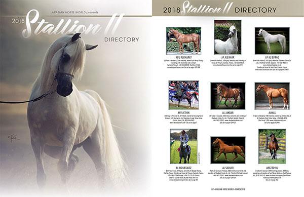 2018 Stallion Directory II