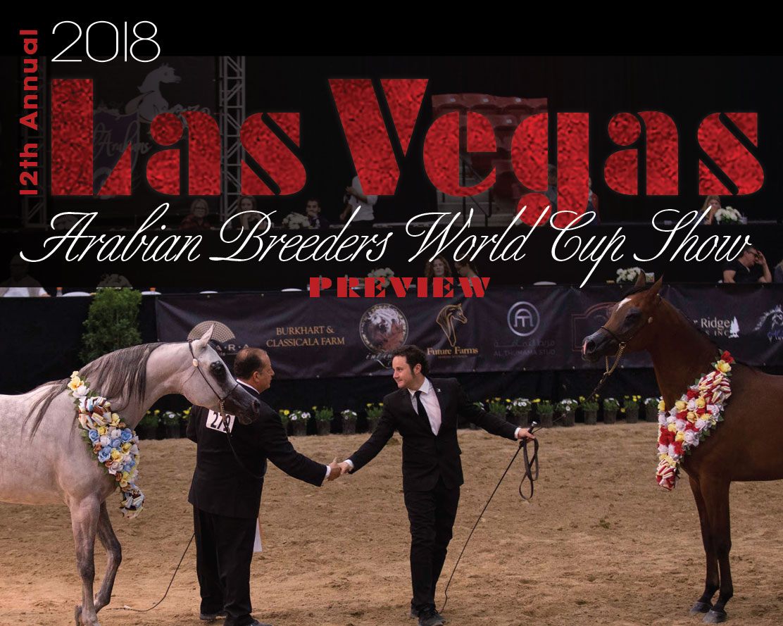 2018 Las Vegas Arabian Breeders World Cup Show Preview