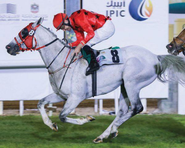 HH Sheikh Mansoor bin Zayed