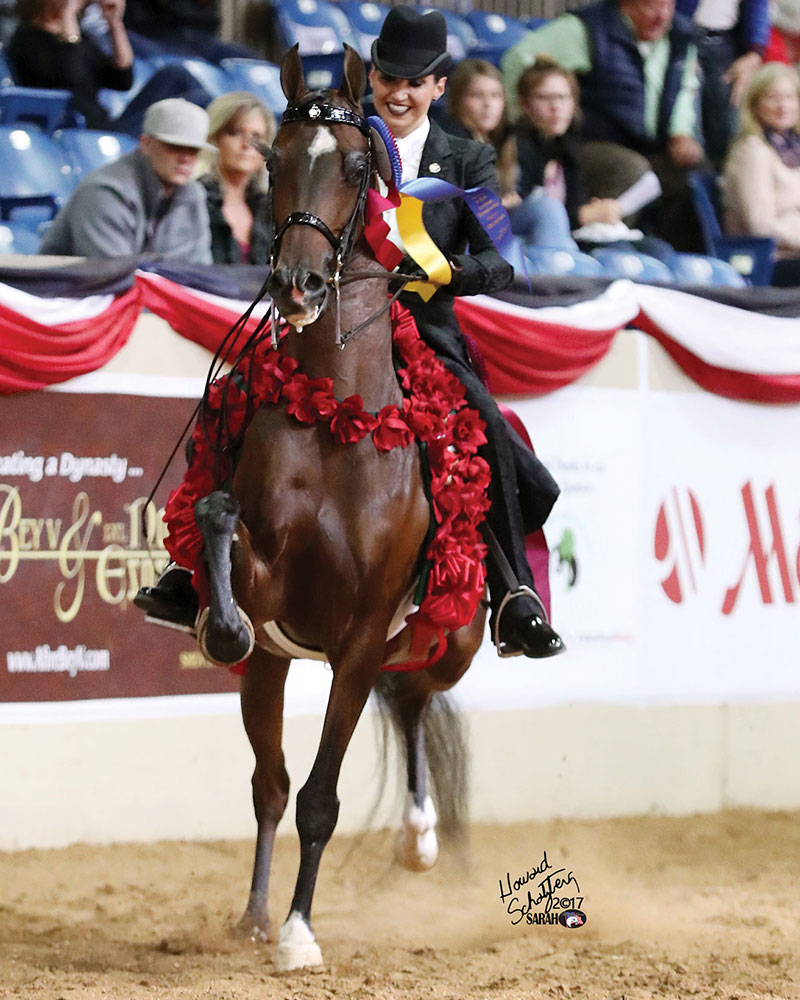 Celebrate your success at U.S. Nationals with Arabian Horse World!