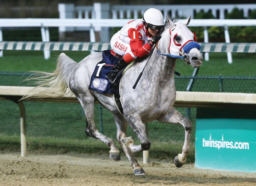 Arabians Race at Churchill Downs