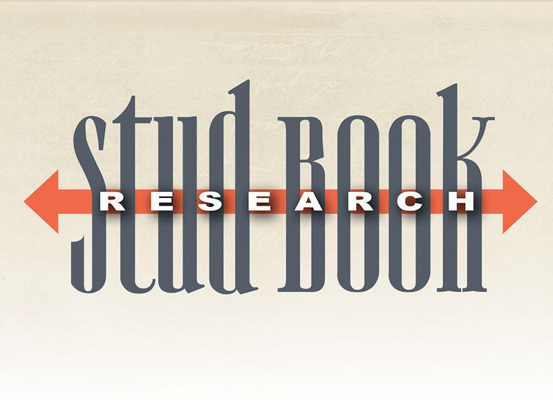 Stud Book Research Volume 89
