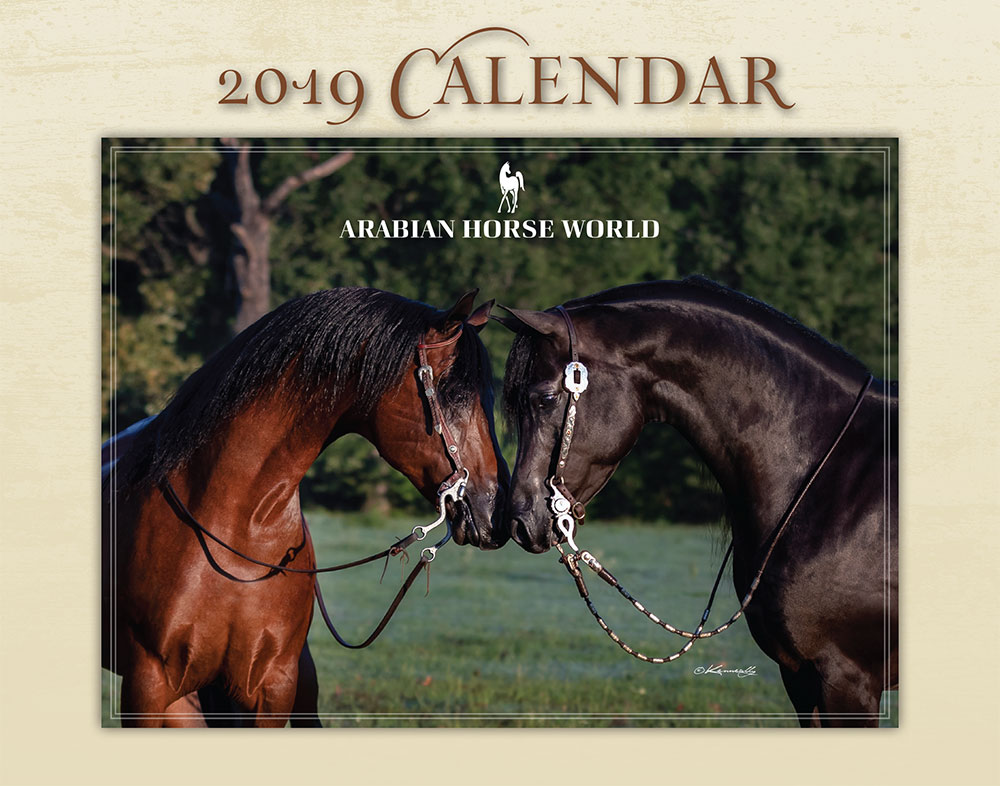 AHW 2019 Calendar