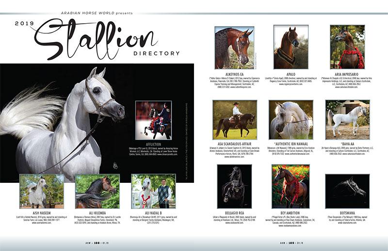 2019 Stallion Directory