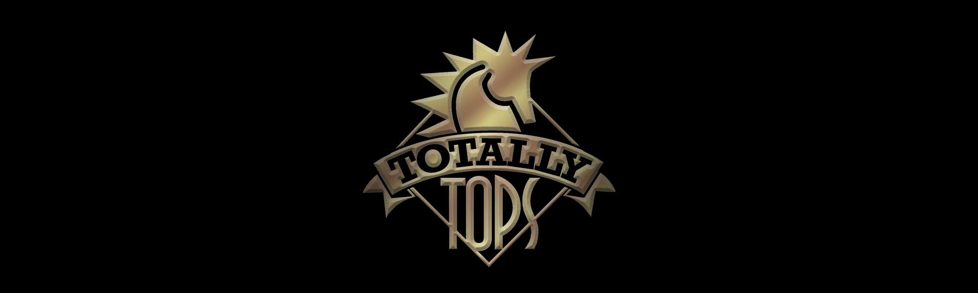 Totally Tops for 2017