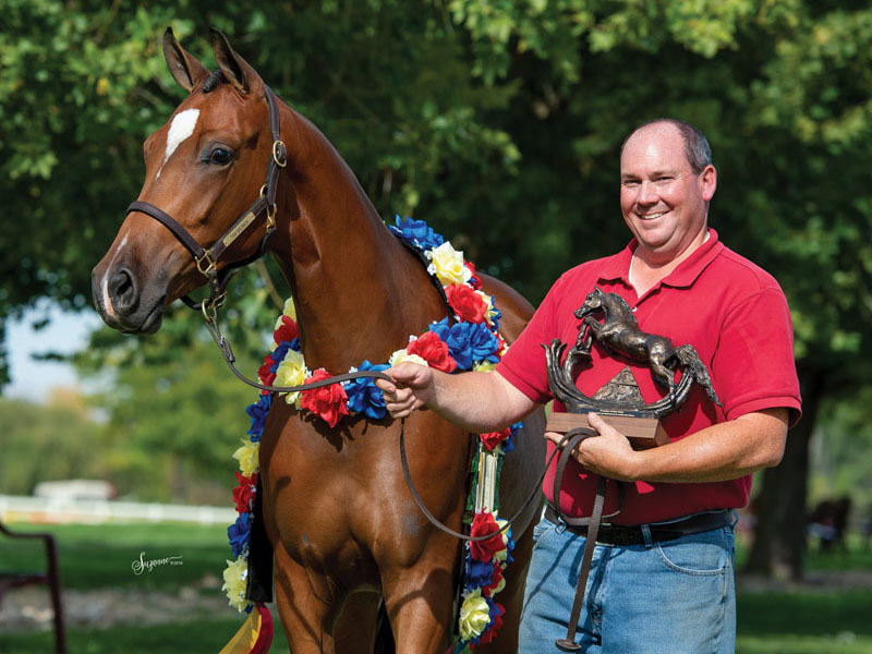My Life with the Arabian Horse: Bob Bennett Jr. of Three Oaks Arabians