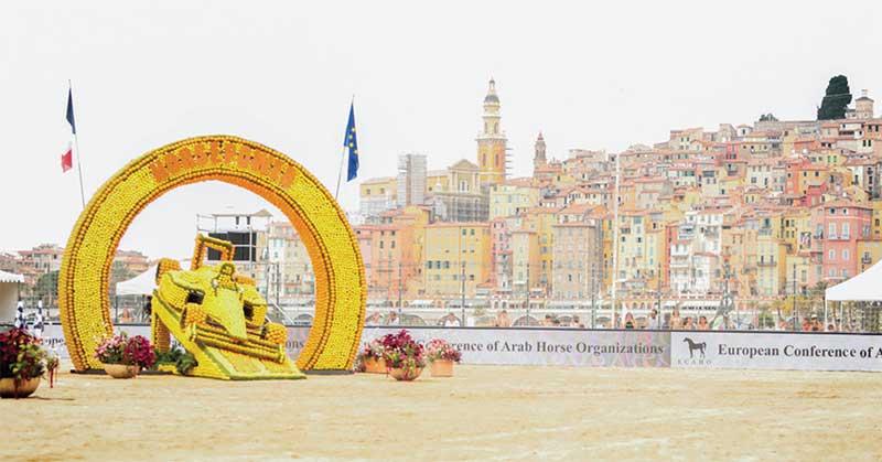 2019 Mediterranean & Arab Countries Arabian Horse Championships