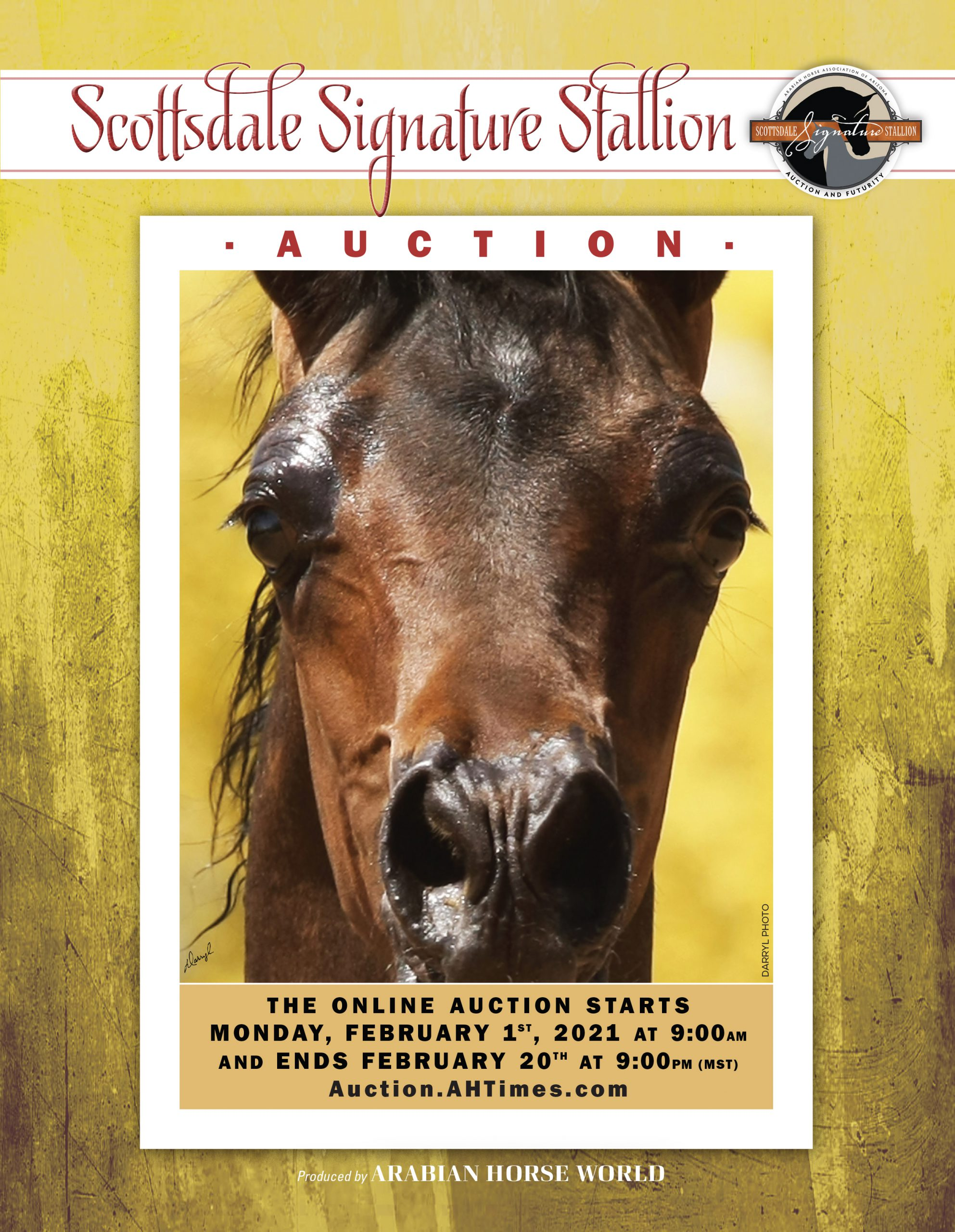 2021 SCOTTSDALE SIGNATURE STALLION AUCTION CATALOG