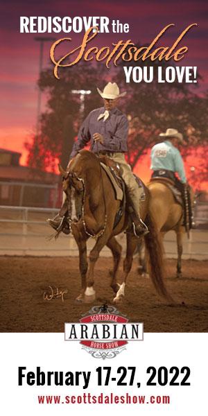 The Scottsdale Arabian Horse Show ~ Discover The Arabian Breed